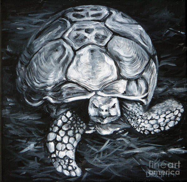 Tortuous Painting - Slow And Steady by Deborah Smith