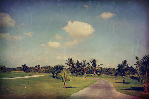 Golf Green Photograph - Slow And Steady by Laurie Search