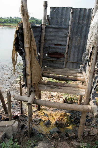 Toilet Photograph - Slum Toilet In Dhaka by Adam Hart-davis/science Photo Library