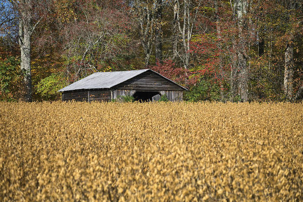 Photograph - Small Barn 1 by Patrick M Lynch