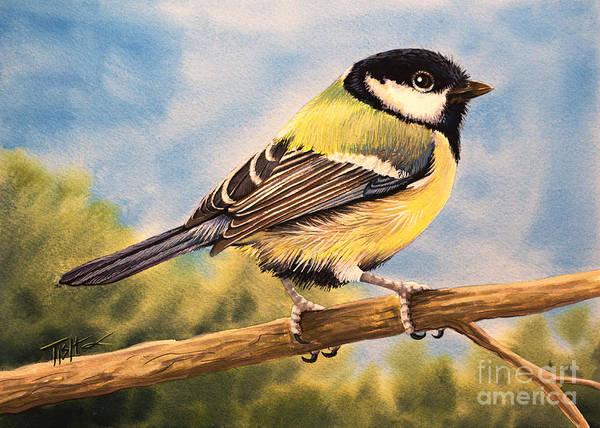 Small Bird Art Print