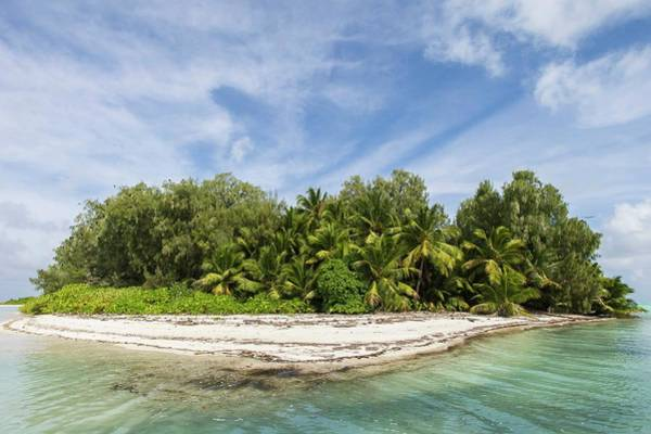 Atoll Photograph - Small Palm-covered Island by Peter Chadwick