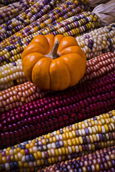 Indian Corn Photograph - Small Pumpkin And Indian Corn by Garry Gay