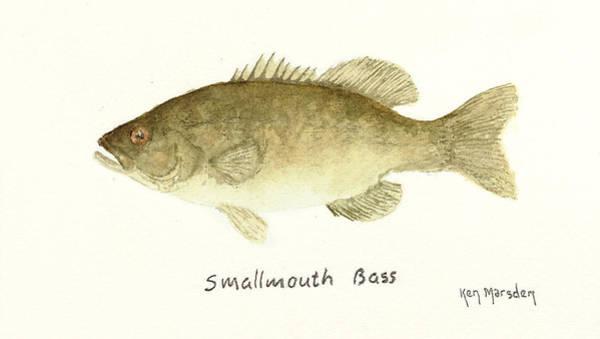 Smallmouth Bass Art Print