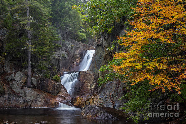 Photograph - Smalls Falls by Susan Cole Kelly