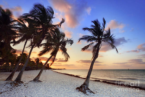 Key West Photograph - Smathers Beach 1 by Rod McLean
