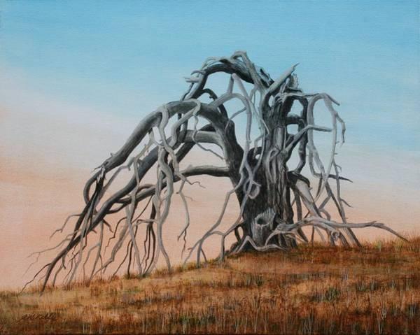 Smiley Canyon Tree Art Print by J W Kelly