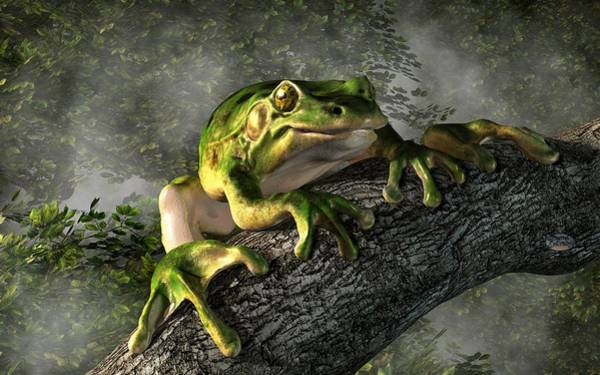 Wall Art - Digital Art - Smiling Frog by Daniel Eskridge