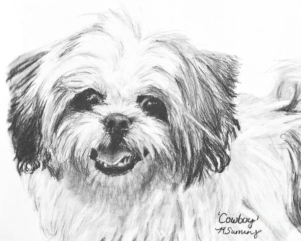 Art Print featuring the drawing Smiling Shih Tzu by Kate Sumners