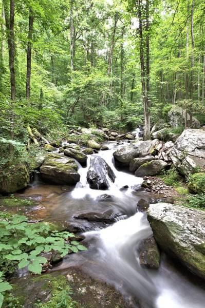 Photograph - Smith Creek Downstream Of Anna Ruby Falls - 1 by Gordon Elwell
