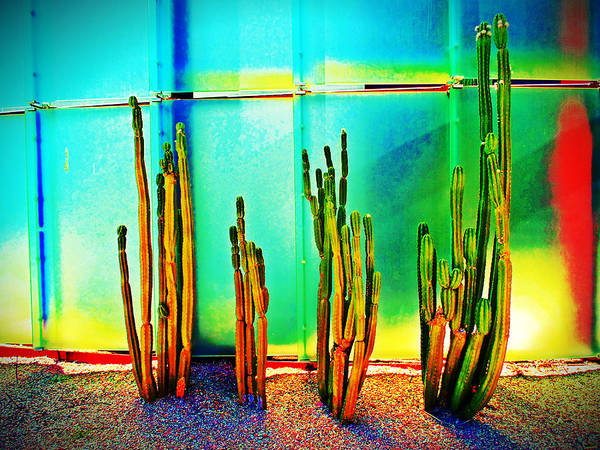 Mixed Media - Smoca Cacti by Michelle Dallocchio