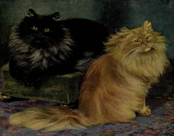 Manx Cat Wall Art - Painting - Smoke And Orange Persians by Philip Ralley