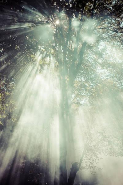 Photograph - Smoke by Chris Bordeleau
