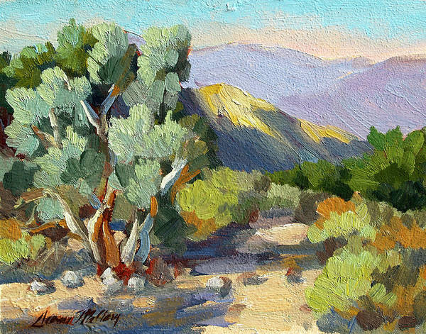 Wall Art - Painting - Smoke Trees At Thousand Palms by Diane McClary