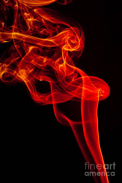 Photograph - Smoked by Anthony Sacco