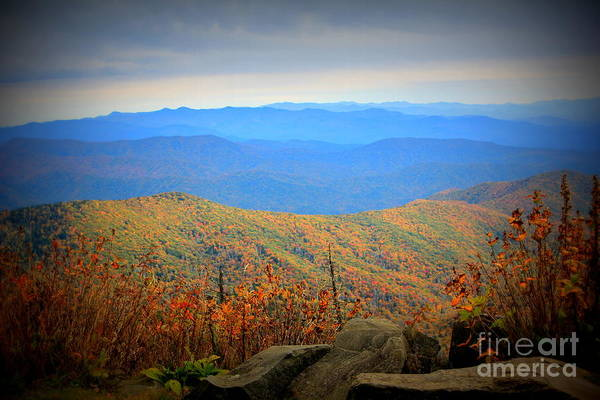 Photograph - Smokies In The Autumn by Cynthia Mask