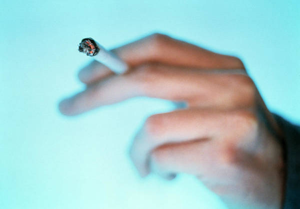 Tobacco Photograph - Smoking by Lawrence Lawry/science Photo Library