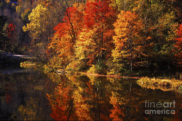 Photograph - Smoky Mountain Colors - 235 by Paul W Faust -  Impressions of Light
