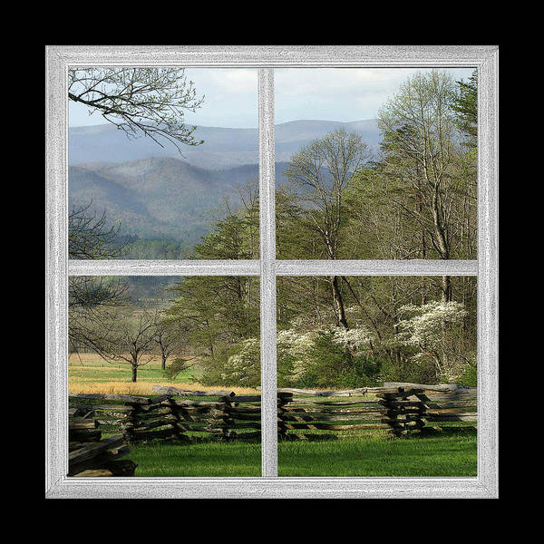 John Oliver Cabin Photograph - Smoky Mountain Dogwood Blossoms by TnBackroadsPhotos