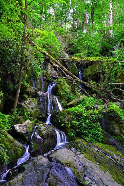 Wall Art - Photograph - Smoky Mountain Falls by David Lee Thompson