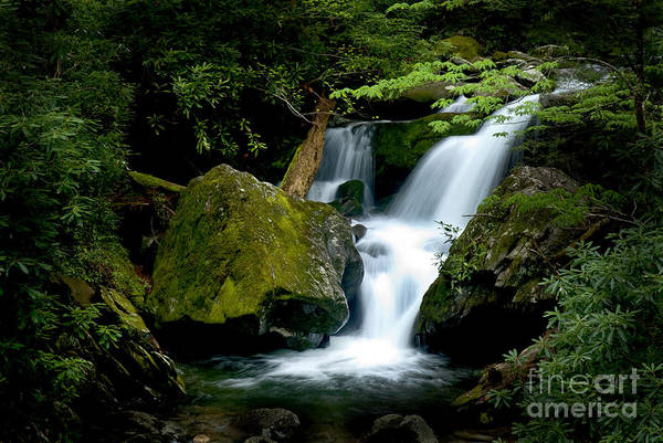 Wall Art - Photograph - Smoky Mountain Falls by Paul W Faust -  Impressions of Light