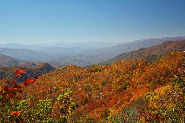 Photograph - Smoky Mountain Foliage by Jean Clark