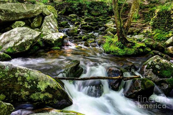 Photograph - Smoky Mountain Stream 4 by Mel Steinhauer