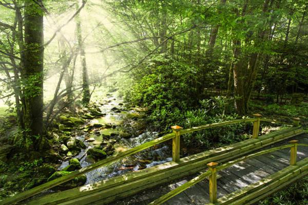 Nantahala Photograph - Smoky Mountain Stream by Debra and Dave Vanderlaan