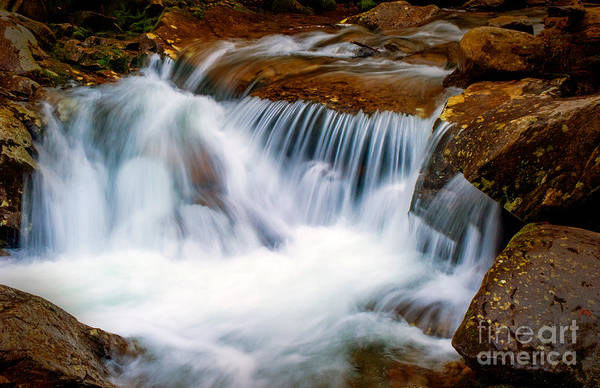 Photograph - Smoky Mtn Stream - 019 by Paul W Faust -  Impressions of Light