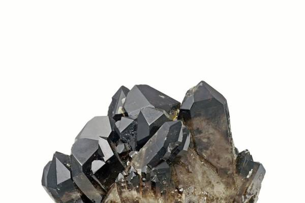 Quartz Photograph - Smoky Quartz Crystals by Michael Clutson/science Photo Library