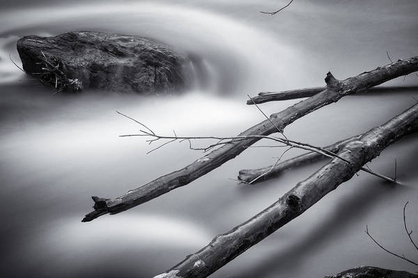 Patapsco Photograph - Smooth Water And Branches by Geoffrey Baker