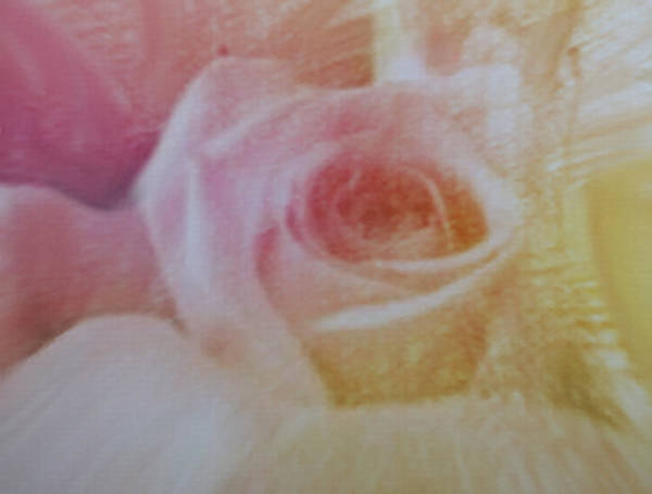Mixed Media - Smudged Pencil Rose by Dennis Buckman