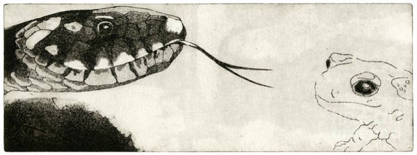 Painting - Snake And Salamander - When There Is No Way Forward  - Prey System - Food Chain - Etching Series by Urft Valley Art