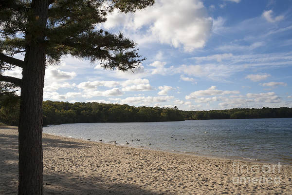 Photograph - Snake Pond Beach In Sandwich On Cape Code Massachusetts by William Kuta