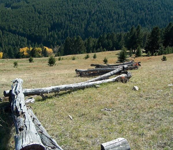 Jackleg Photograph - Snake Rail Fence by Mark Eisenbeil