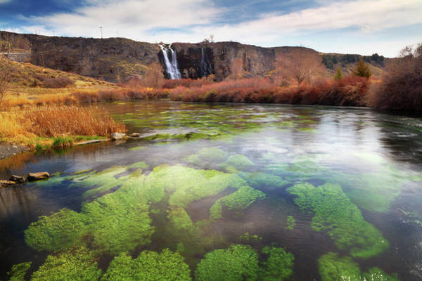 Snake Photograph - Snake River And Thousand Springs, Idaho by Anna Gorin