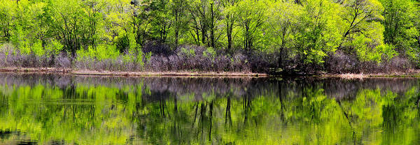 Wall Art - Photograph - Snake River Reflection by Ed  Riche
