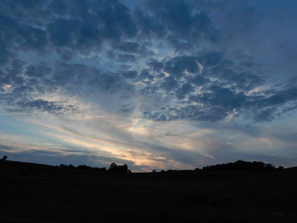 Photograph - Snakeskin Clouds by Wild Thing