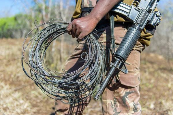 Assault Rifle Wall Art - Photograph - Snares Found In Anti-poaching Patrol by Peter Chadwick