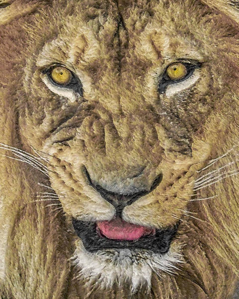 Big Cat Digital Art - Snarl by Ernie Echols