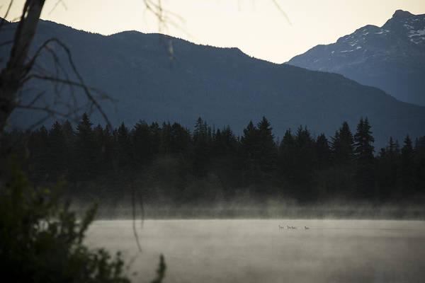 Duck Hunt Photograph - Sneak Peak by Aaron Bedell