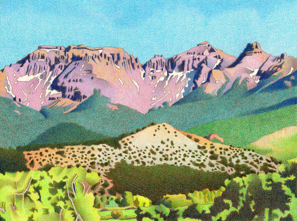 Evergreen Trees Drawing - Sneffels Range Summer by Dan Miller