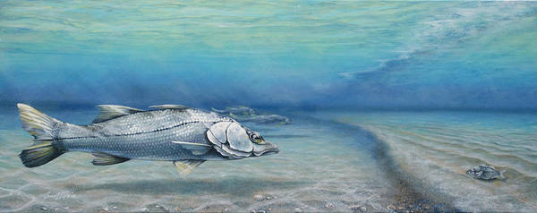 Painting - Snook Waiting Perch Watching by Joan Garcia