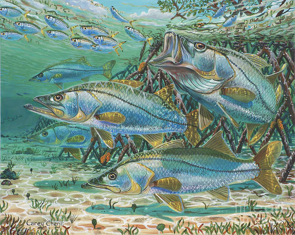 Bait Wall Art - Painting - Snook Attack In0014 by Carey Chen