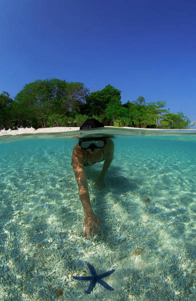 Above And Below Wall Art - Photograph - Snorkeler Exploring Starfish In Lagoon by Aaron Wong