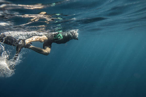 Snorkeling Photograph - Snorkeling by Tyler Stableford