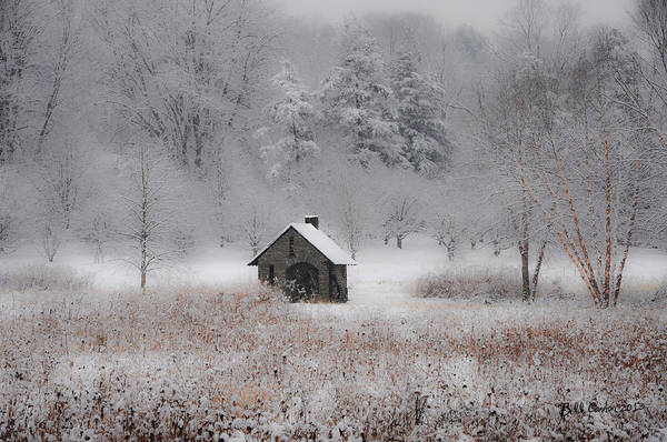 Chestnut Hill Photograph - Snow At Morris Arboretum by Bill Cannon