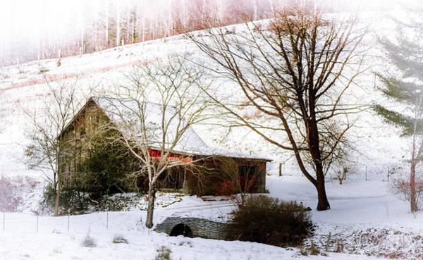 Photograph - Snow Blanket by Karen Wiles