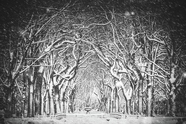 Mall Photograph - Snow Blizzard New York by Ferrantraite