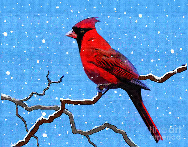 Bird Watching Digital Art - Snow Card by Robert Foster
